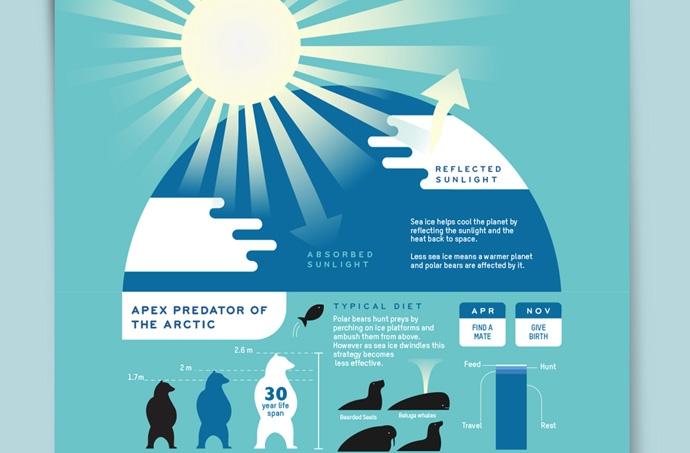 Aqil Raharjo - Polar Bears