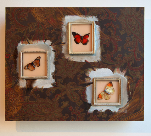 Heather Nicol, Three Butterflies, image provided by Heather Nicol