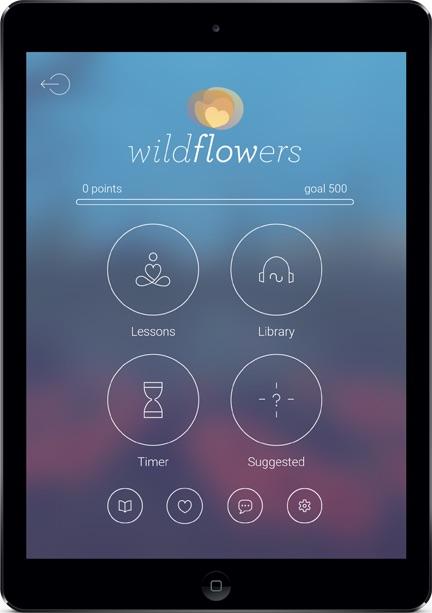 MT - wildflowers