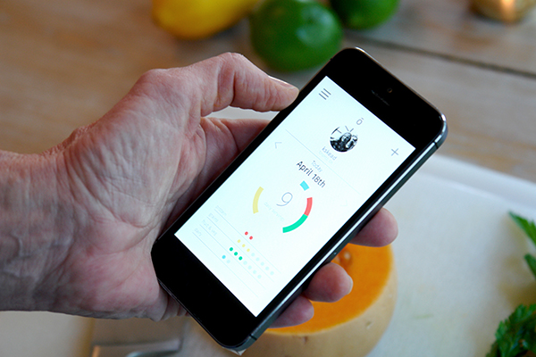 Alo's app: for tracking daily nutritional servings (by Jessye Grundlingh)