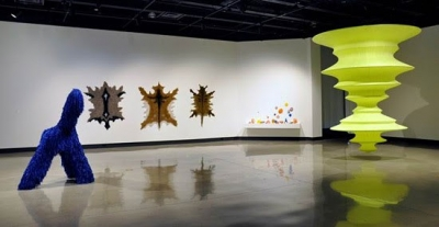 Photo of animal skins on a white gallery wall