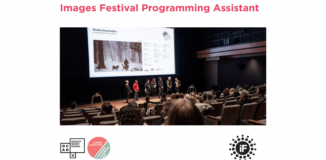 Call for Applications - Images Festival Programming Assistant