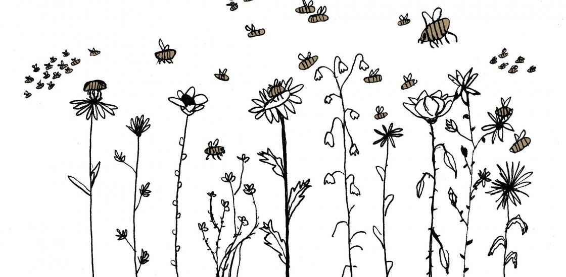 Illustration of flowers wth pollinators buzzing around