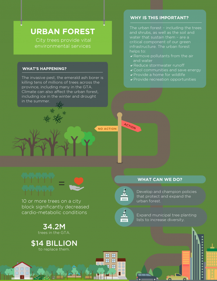 Living City Report Card Urban Forest