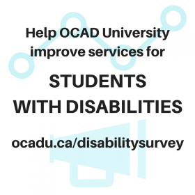 Disability Survey photo