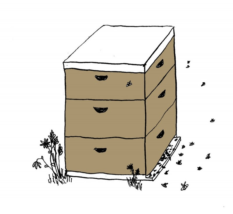 A square beehive with bees buzzing nearby