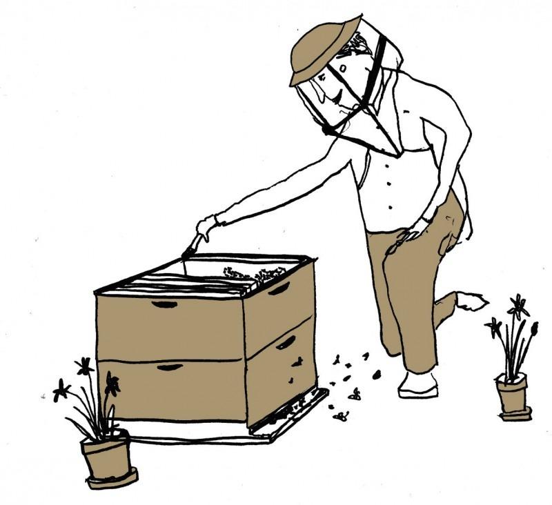 Illustration of beekeeper kneeling beside beehive