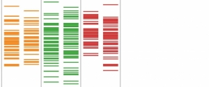 Red and green DNA testing visualization