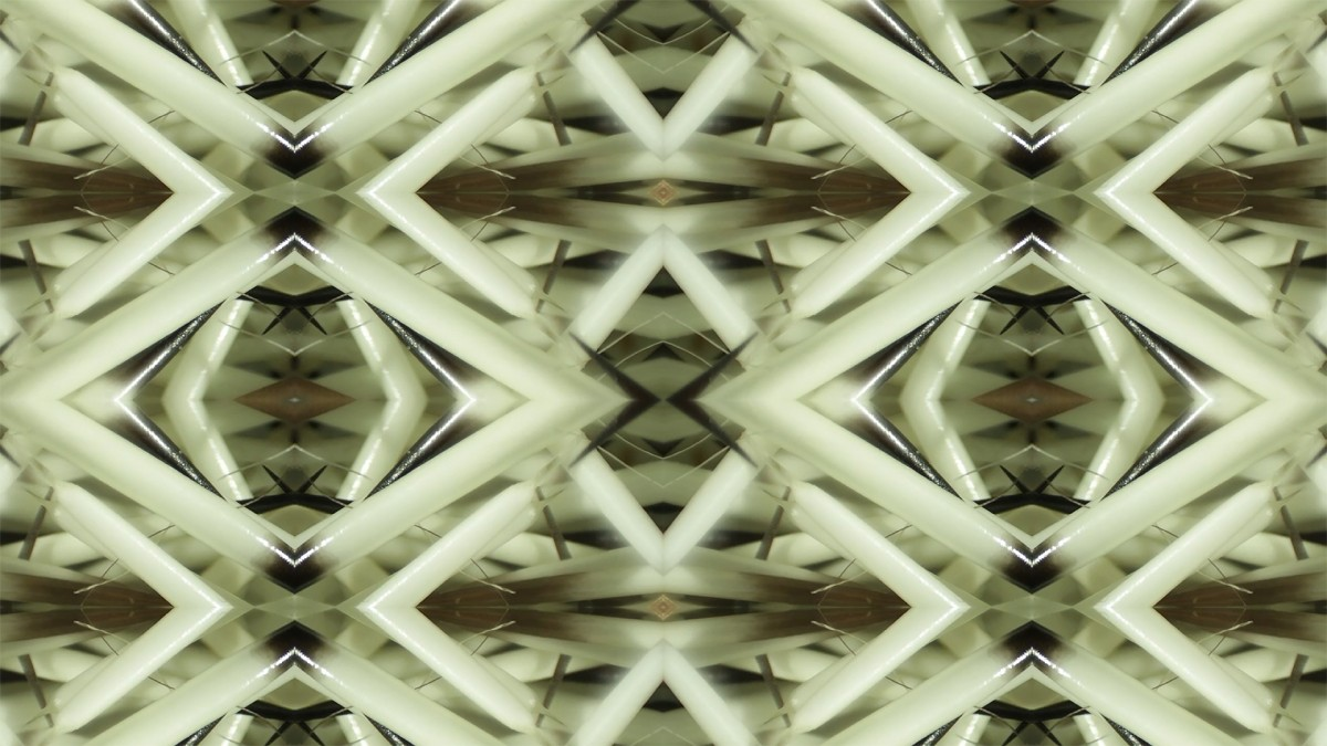 Image: Shifting Focus, digital video, 10:00 minutes, colour, sound, no language, 2019