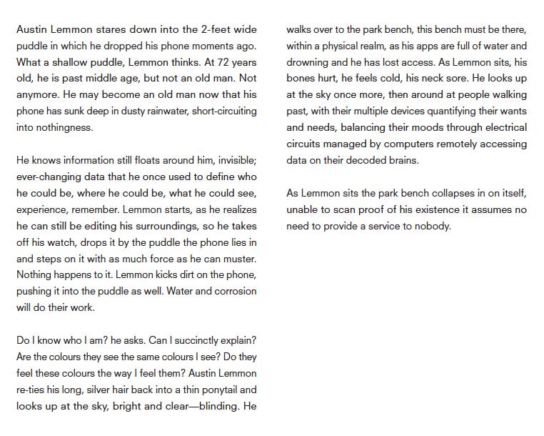 Austin Lemmon Story Psychometrics