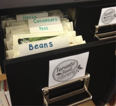 Seeds at the library