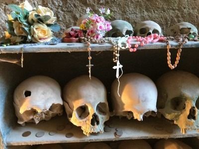 Image of an artwork skulls on a shelf