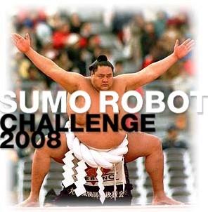 Sumo Robot Challenge