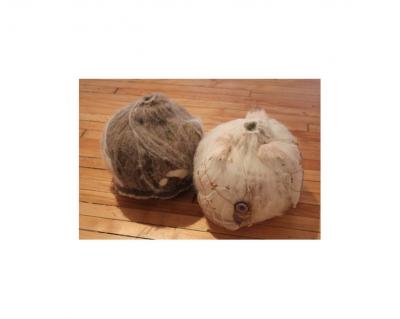 Moth Balls