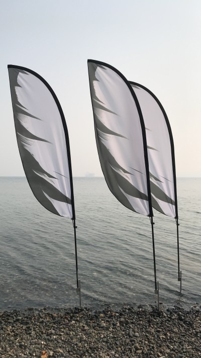 image of flags in front of a water mass