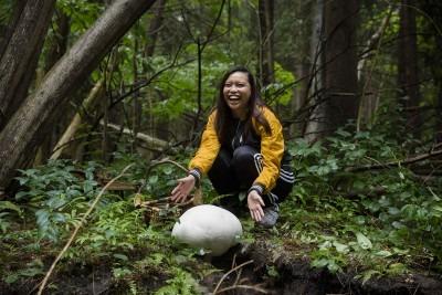 Mushroom-gathering