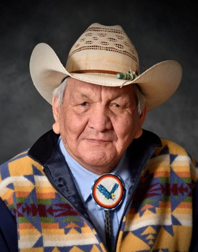 Portrait of artist Alex Janvier