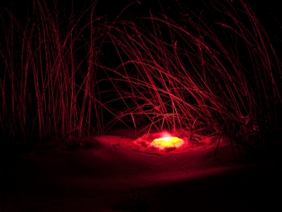Image of glowing embers in cave of grasses