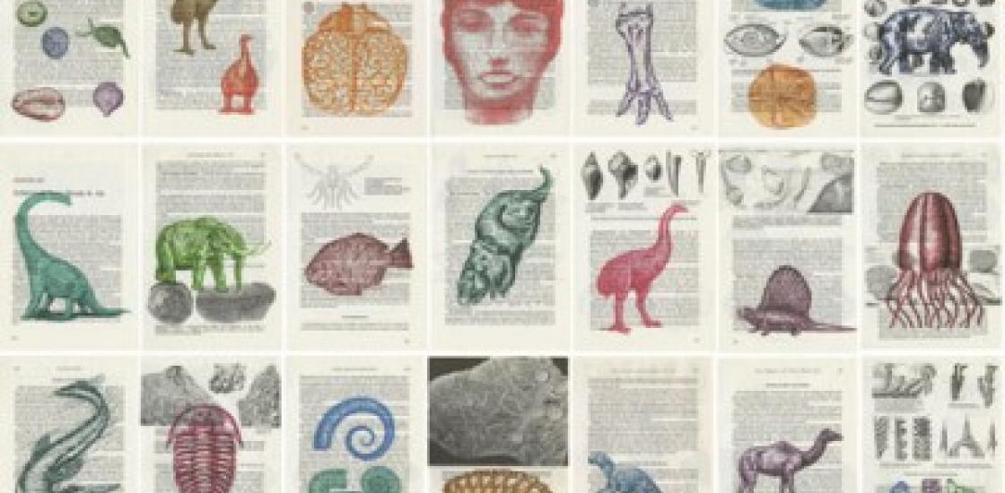 Barbara Astman, The Fossil Book (detail), 2013.