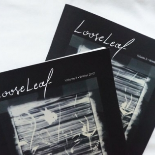 photo of the cover of two issues of Loose Leaf Arts Magazine, vol 3