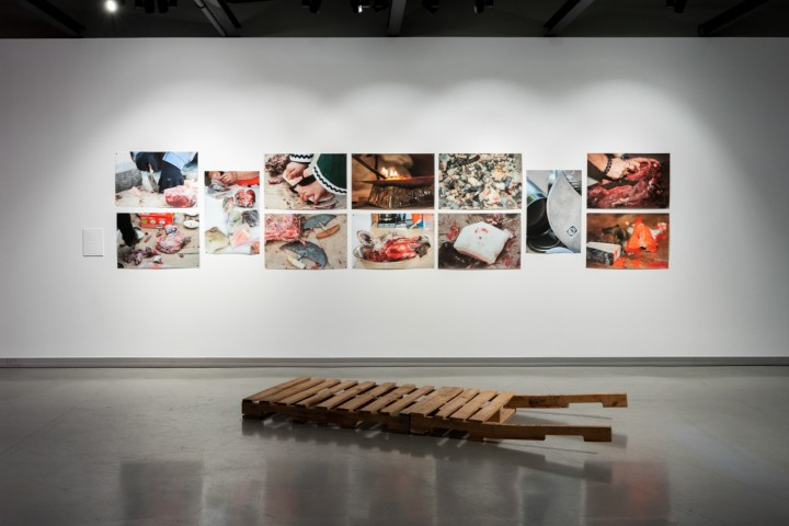 Installation view: Among All These Tundras , Onsite Gallery, OCAD University, Toronto, 2019.