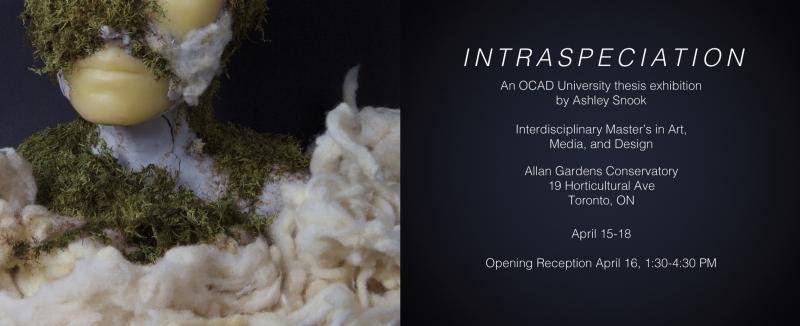 Ashley Snook: Intraspeciation