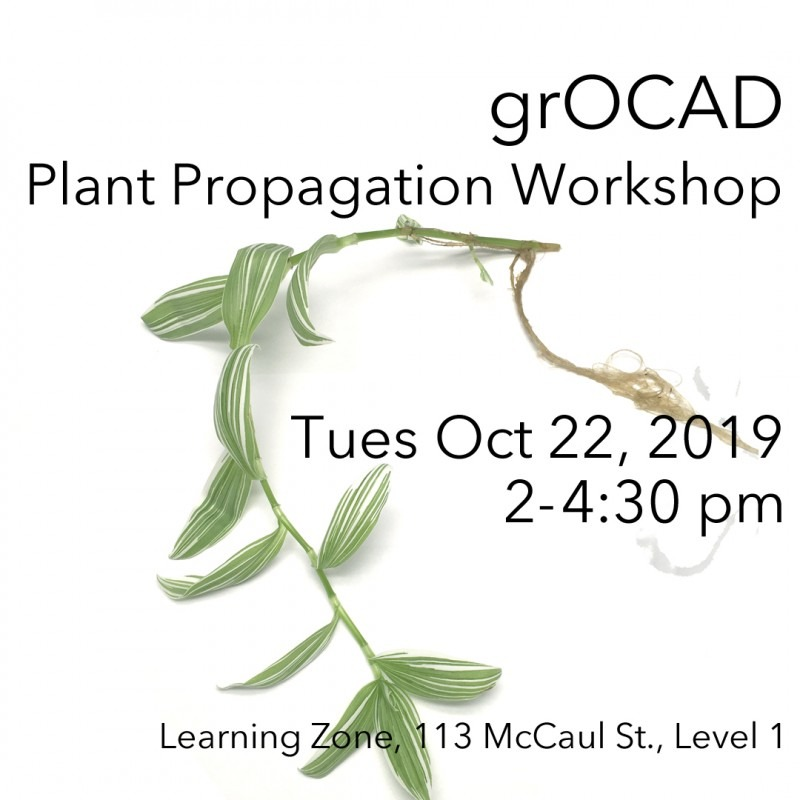 Poster with image of plant and text promoting the dates to the workshop