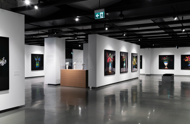 Installation view: T.M. Glass: The Audible Language of Flowers, Onsite Gallery, OCAD University, Toronto, 2019. Photo: Yuula Ben